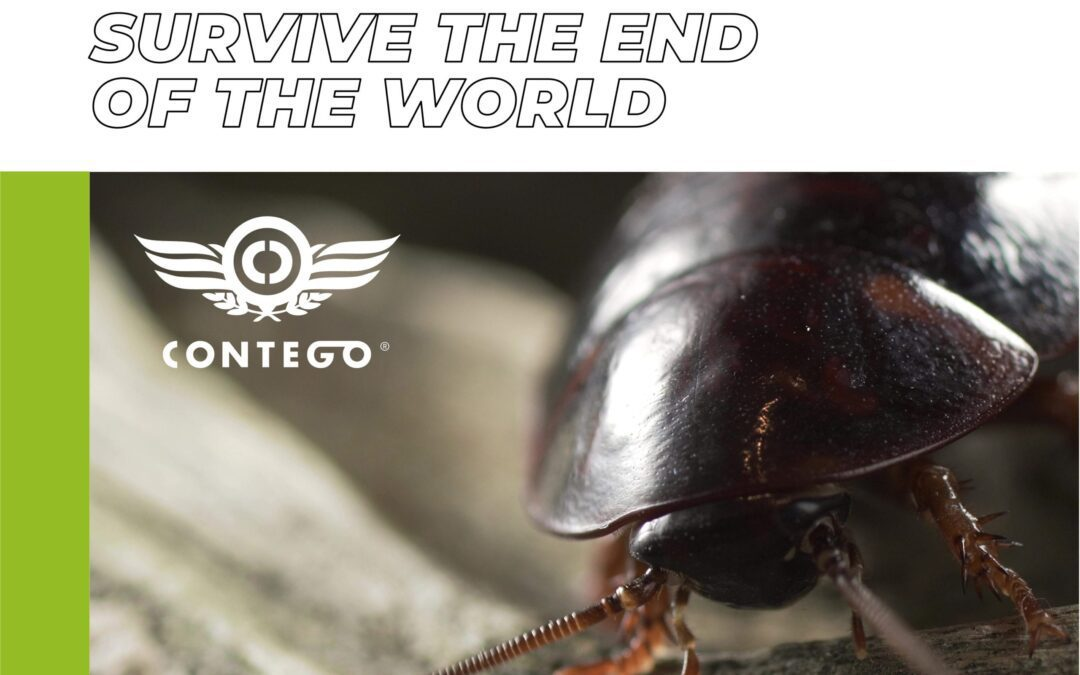 Urban Myth: Cockroaches Will Survive the End of the World